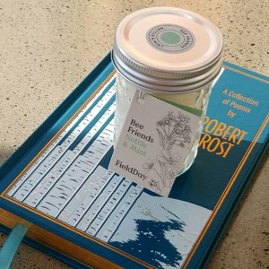 Nettle and Mint Jam Jar Candle from Field Day sitting on a blue poetry book
